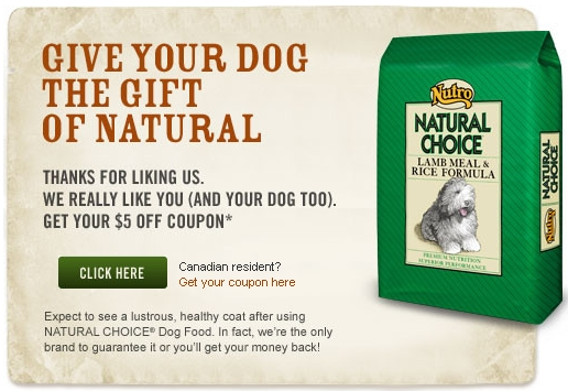 Coupons on nutro dog food